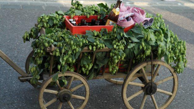 Ein festlich geschmückter Bollerwagen zum Vatertag